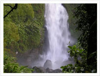 Middlehams Falls dominica tours